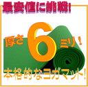 【専用メッシュケースをプレゼント!】厚さ6mm ヨガマットクッション性抜群!! (厚さ6mm ヨガマット yogamat)