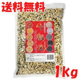 送料無料 十穀米 1kg 発芽玄米入り 【 十穀 雑穀 雑穀米 発芽玄米 業務用 スーパーフード 】