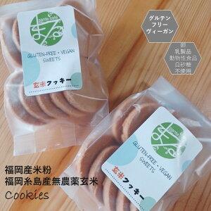【送料込み】グルテンフリー ビーガン 玄米 米粉で作ったクッキーセットです。小麦粉 卵 乳製品 動物性油 不使用。アレルギー対応 ダイエット ヴィーガン 授乳中