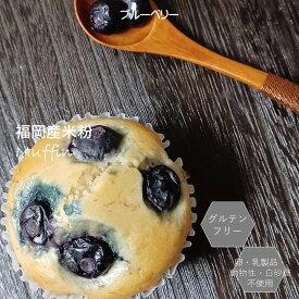 グルテンフリー ビーガン ブルーベリーマフィン 100%福岡産米粉 小麦粉・卵・乳製品・動物性不使用 アレルギー対応 ダイエット スイーツ ヴィーガン お菓子