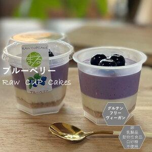 グルテンフリー ビーガン ブルーベリーRAWCUPケーキ 小麦粉・卵・乳製品・動物性不使用 アレルギー対応 ダイエット スイーツ ヴィーガン