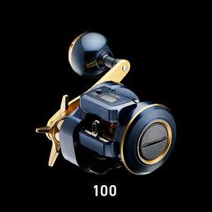 ソルティガ IC 100