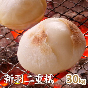 2年産【もち米】京都丹後産 新羽二重糯 玄米30kg
