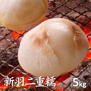 京都丹後新羽二重糯 5kg