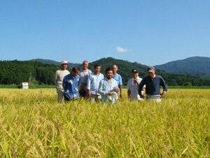 京都丹後豆っこコシヒカリ白米5kg(特別栽培米)