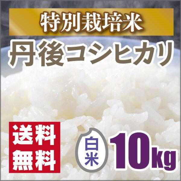 【特別栽培米】京都丹後コシヒカリ白米10kg 30年産