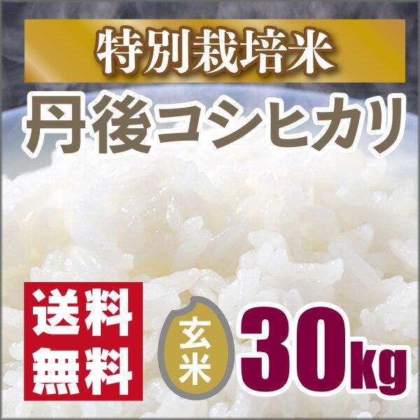 【特別栽培米】 京都丹後コシヒカリ玄米30kg(30年産)