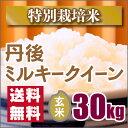 【特別栽培米】新米 京都丹後ミルキークイーン玄米30kg(29年産新米)