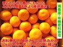 【送料無料】減農薬有機肥料栽培!熊本 天水産 【尾池さんの完熟みかん10kg(2Sサイズ)】天水みかん(ご家庭用/訳あり/…