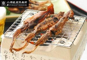 【メール便無料】肝入り真イカの丸干しイカ 100g(1匹約10cm)【肝入り真いか】【珍味】