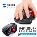 トラックボールマウス ワイヤレスマウス エルゴノミクスマウス レーザーマウス カウント数自動調整 6ボタン 超小型レシーバー 無線マウス