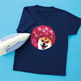 アイロンプリント紙 カラー布用 A4 10枚 オリジナルTシャツ作成に最適 転写紙 運動会・学園祭に