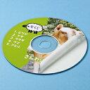 CDラベル DVDラベル 100枚 内径41mm マット紙 [LB-CDR001N-100]【サンワサプライ】【ネコポス対応】【楽天BOX受取対象商品】