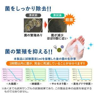 消毒ウェットタオルウェットティッシュ殺菌無香料厚手タイプ持ち運び10個セット