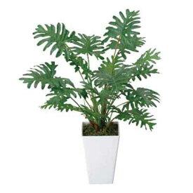 光触媒 光の楽園 クッカバラ 253A35約 幅35×奥行35×高さ45cm人工植物 造花 フェイクグリーン おしゃれ インテリア 小型 卓上