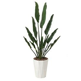 光触媒 光の楽園 トラベラーズパーム1.55 411A300約 幅75×奥行30×高さ155cm人工植物 造花 フェイクグリーン おしゃれ インテリア 大型