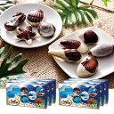 [送料無料] モルディブお土産 | モルディブ シーシェルチョコレート ドルフィン紙袋付き 6箱セット【174041】
