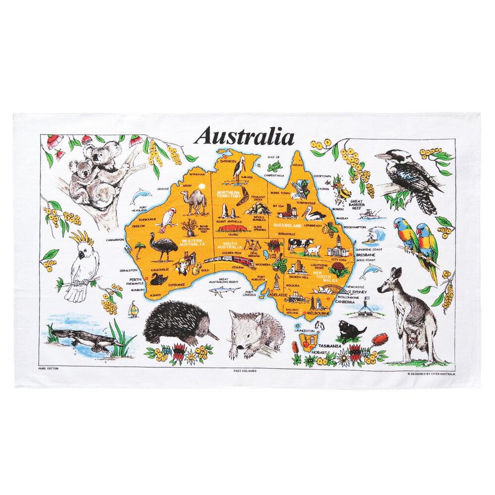 [5000円以上で送料無料] オーストラリアお土産 | オーストラリア マップティータオル【175048】