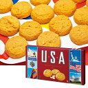 [5000円以上で送料無料] アメリカお土産 | USA マカデミアナッツクッキー【162512】