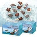 [送料無料] フィリピンお土産 | セブ シーシェルチョコレート 6箱セット【166620】