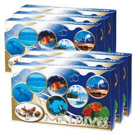 [5400円以上で送料無料] モルディブお土産 | モルディブ シーシェルチョコレート 6箱セット【194104】