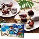 [5000円以上で送料無料] モルディブお土産   モルディブ シーシェルチョコレート 1箱 ...