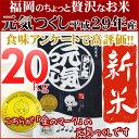 元気つくし 新米 20kg(5kg×2) 金のめし丸マークあり 福岡県産 平成29年産