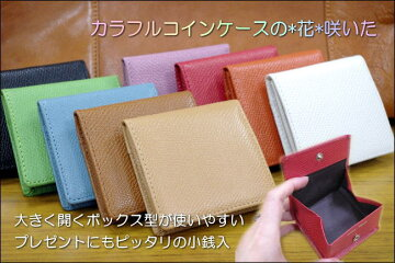 coloree-コロレ-牛革BOX型小銭入【楽ギフ_包装選択】【楽ギフ_メッセ入力】
