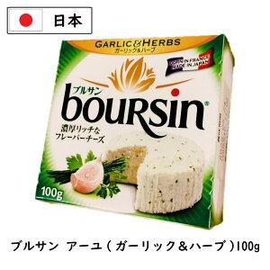 ブルサン アーユ 100g【国産】【業務用】