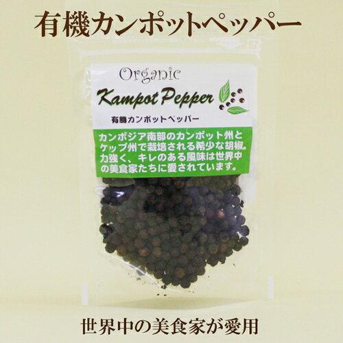 ●【有機カンポットペッパー】25g 志立 有機JAS認定食品 有機黒コショウ【自然食品】