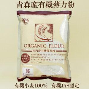●青森産有機薄力粉 有機 桜井食品 薄力粉500g オーガニック薄力粉