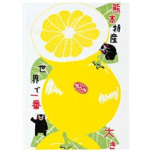 【定形外郵便対応】布ごよみ てぬぐい くまモン ばんぺいゆ柄 晩白柚 タオル 日本製
