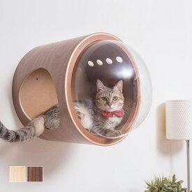 キャットウォーク 壁 キャットタワー [〈MYZOO マイズー〉宇宙船ガンマ ネコハウス] サラサデザインストア