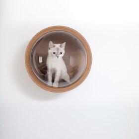 [MYZOO(マイズー)/宇宙船ガンマネコハウス]猫用猫ネコベッドキャットハウスペットハウスペットベッド木製おしゃれインテリア壁付けウォールベッドキャットタワー