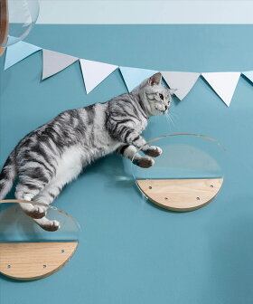 myzooキャットタワー木製壁猫家具猫ハウスキャットウォークキャットステップ[MYZOO〈マイズー〉ROUNDLACKキャットステップ1枚入り]