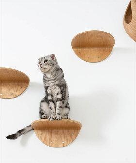 myzoo木製壁猫家具猫ハウスキャットウォークキャットステップ[MYZOO〈マイズー〉ROUNDLACKキャットステップセット2枚入り]
