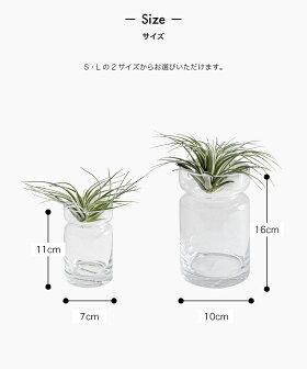 ガラス花瓶一輪挿しおしゃれ[b2cフラワーベースシリンダーS]#SALE_IZ
