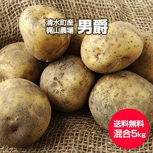 【予約】【送料無料】【北海道 十勝清水産・梶山農場】[男爵5kg](2L〜S混合)