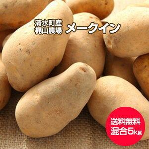 【予約】【送料無料】【北海道 十勝清水産・梶山農場】[メークイン5kg](2L〜S混合)