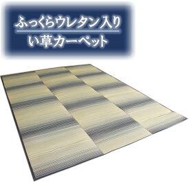 江戸間6畳(261x352cm) ふっくらウレタン入 い草カーペット「霧摩周」ブルー色