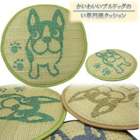 40cmR い草円座クッション「ブルドッグ」グリーン色 10枚セット【夏用クッション】