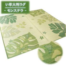 191x250cm(3畳用) グリーン色 い草大判ラグ「モンステラ -シユム- 」【裏貼加工】