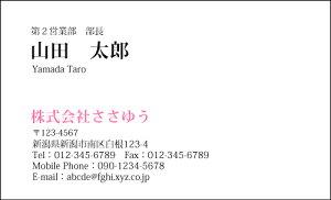 【オリジナル名刺印刷】ベーシック名刺[B_017_av]選べる7色《カラー名刺片面100枚入ケース付》テンプレートを選んで簡単名刺作成シンプルなデザインでビジネスからプライベートまで幅広