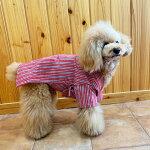 会津木綿甚平赤系三色縞SML犬用ドッグウェアaizumomenアイヅモメン