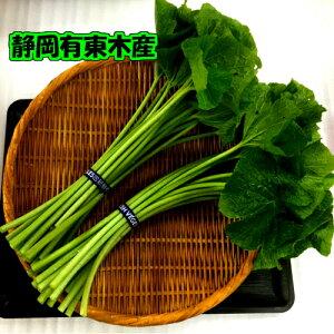 静岡 有東木 わさび名産地 わさび茎・葉 辛みがあり、ビタミンCが豊富です。ピリッと辛い?油漬け・さっぱりとする・酢漬けが美味しいです。ご家庭で簡単に作れます。チャレンジし