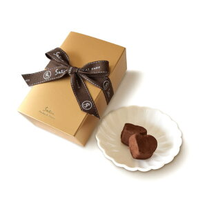 Satie サティー チョコレート コルセショコラ 10個入り【お中元 御中元 夏 ギフト プレゼント トリュフ スイーツ フランス】