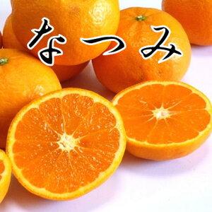 カラマンダリン 家庭用 10キロ 愛媛県産 送料無料 糖度13度以上!温州ミカンのように食べやすく、香りの高い、とても甘い春の柑橘です 【愛媛みかん 蜜柑 ミカン】なつみオレンジ 「ポ