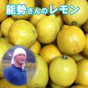 能勢さんの 無農薬レモン 3kg 家庭用/訳あり レモン 有機JAS法 準拠栽培 レモン 送料無料 青レモン 広島県瀬戸田産 …