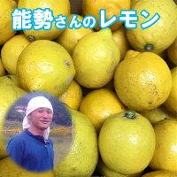 青レモン訳あり