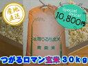 農家直送こだわりの「つがるロマン」 玄米30kg (平成28年産)
